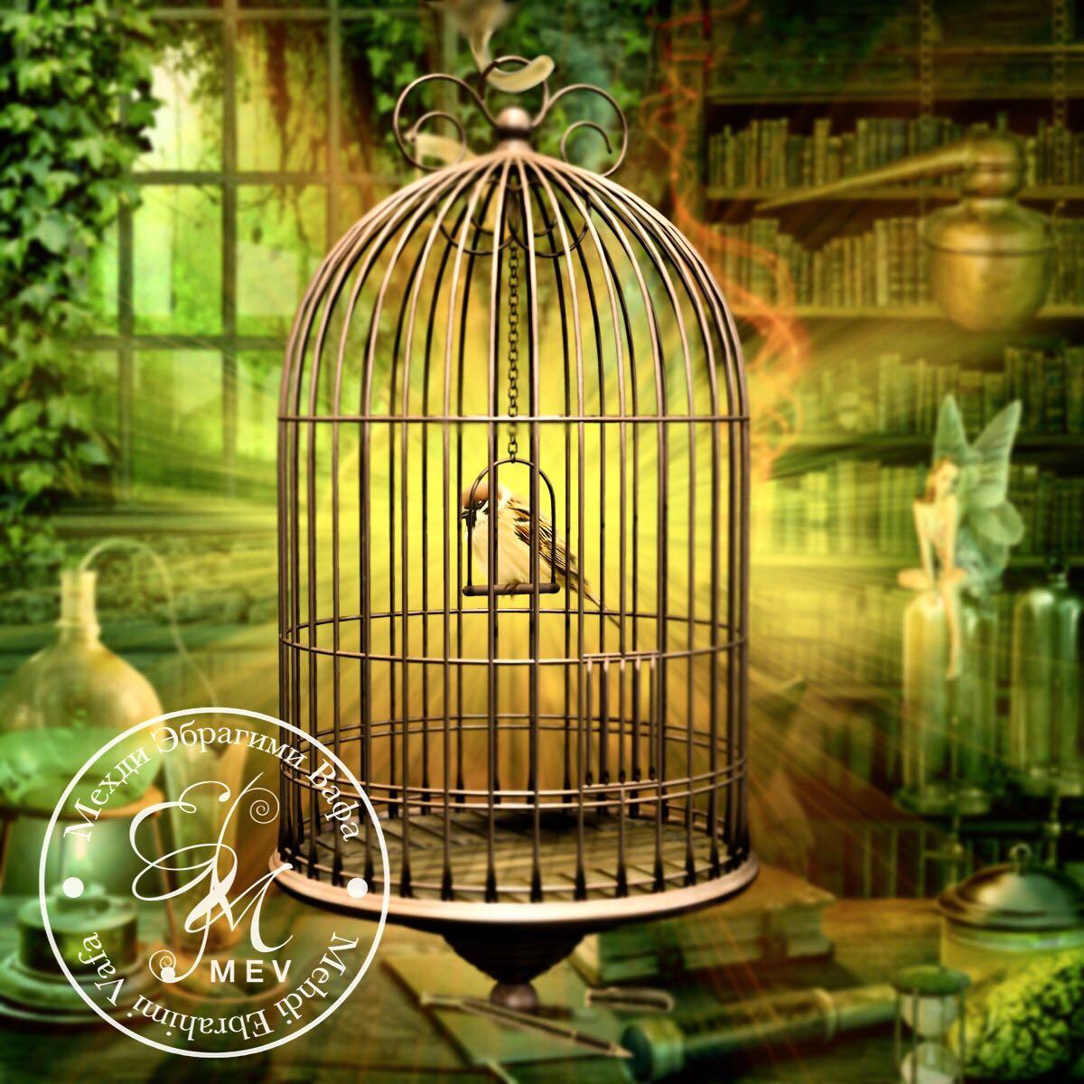 Любовь - это и есть свобода. Автор: Мехди Эбрагими Вафа