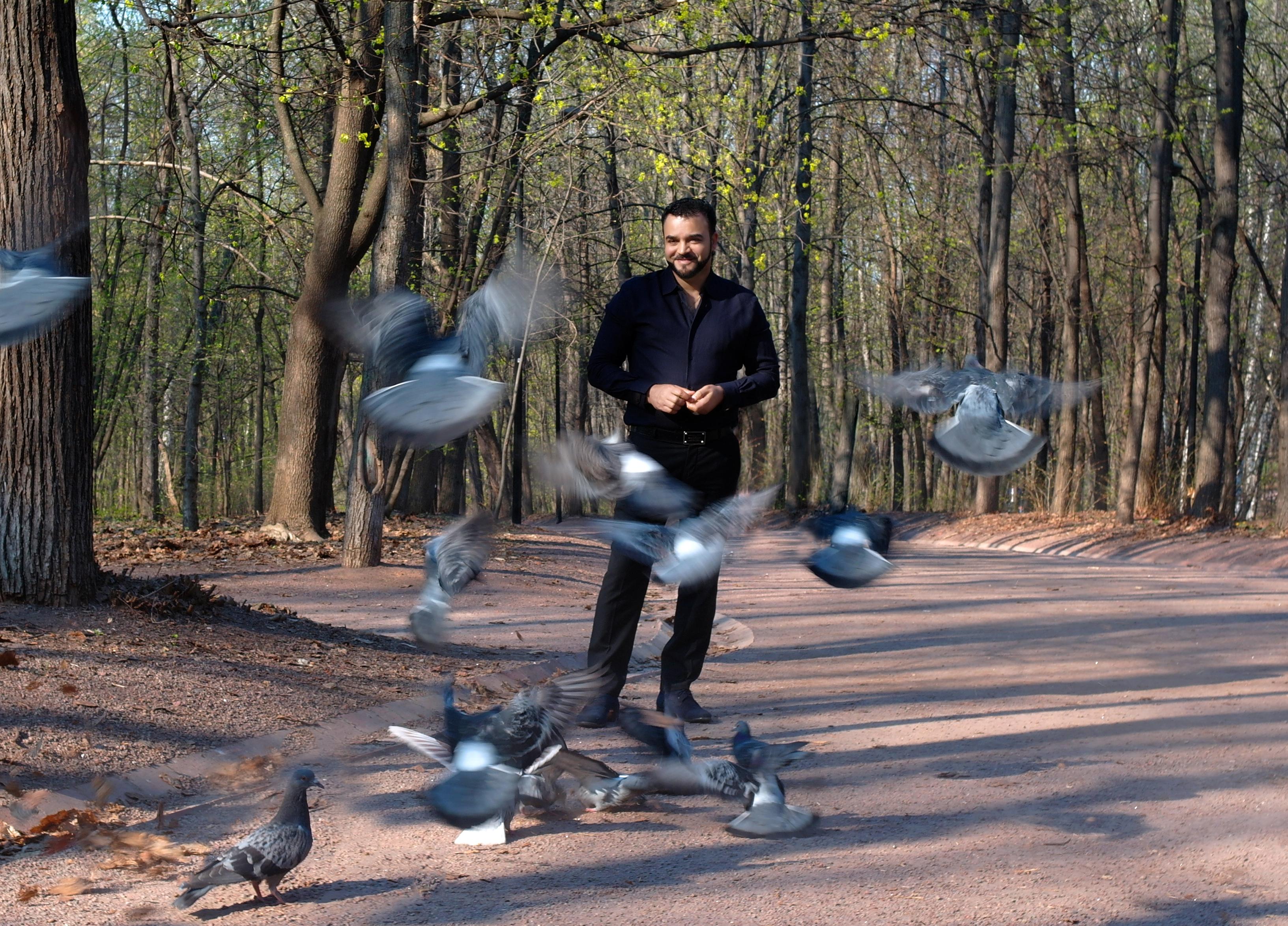 Мехди голуби